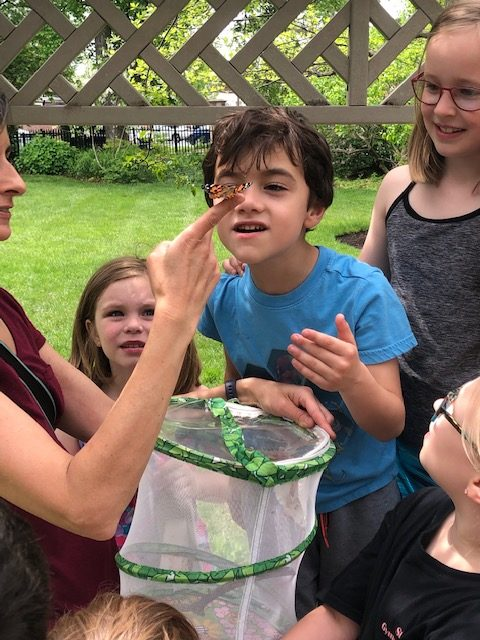 The Release of the Butterflies